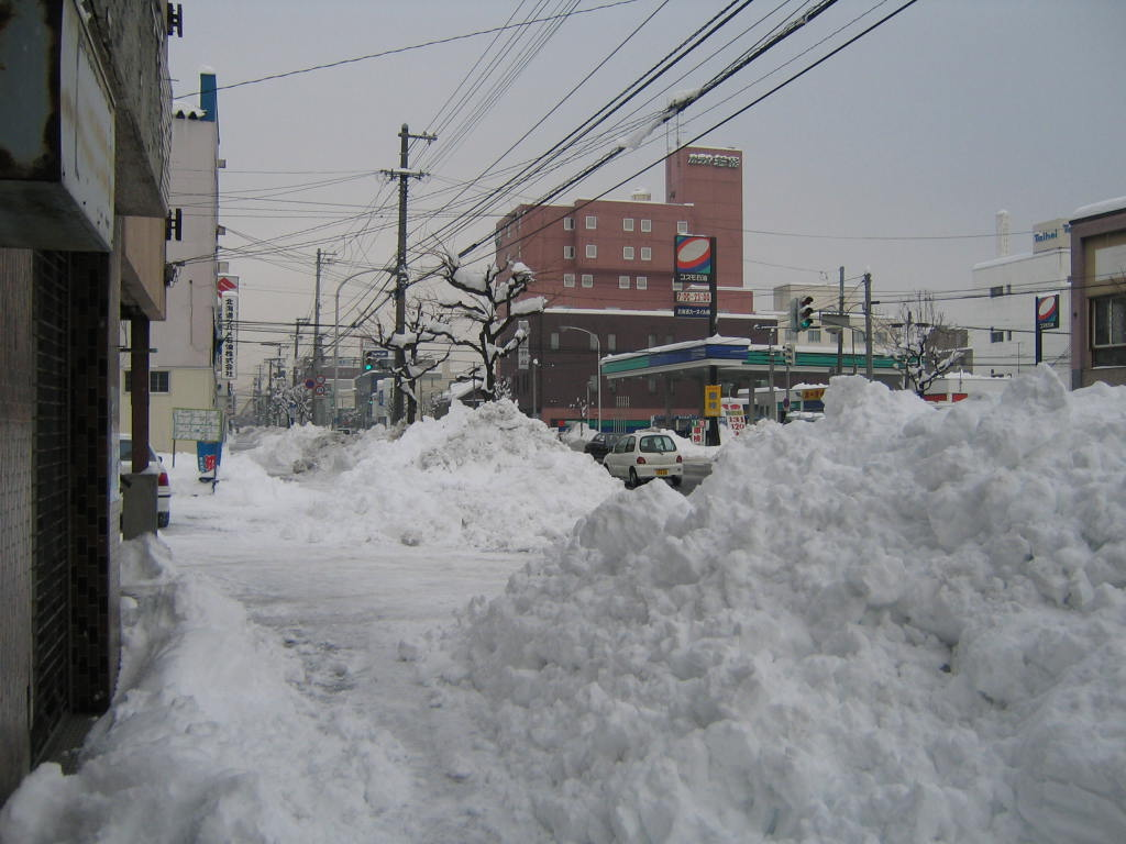 2016 Looking South up Odori