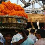 Mullick Ghat Flower Markets, Kolkata